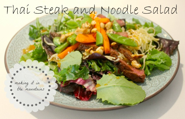 Thai Steak and Noodle Salad | making it in the mountains